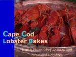 Steamed Lobsters forClambake