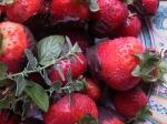 Wild Strawberries w DarkChocolate