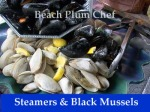 Mussels and Littleneck Clams redone for web beach plumcopy